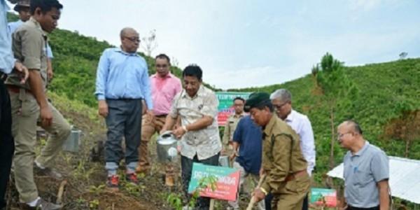 Tripura, Mizoram undertake massive afforestation plan