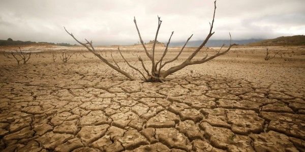 Maharashtra government planning fresh dole for drought-hit farmers