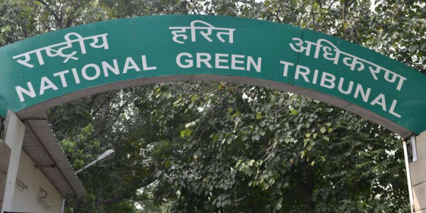 प्रदूषण पर नियंत्रण में नाकाम रही दिल्ली सरकार, जमा कराए 25 करोड़ : एनजीटी