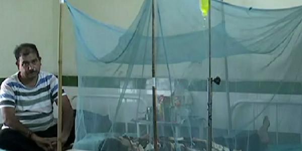 हाईकोर्ट में सरकार ने कहा कि डेंगू पर नियंत्रण कर लिया गया है, याचिकाकर्ता ने कहा दो दिन पहले भी हुई है मौत