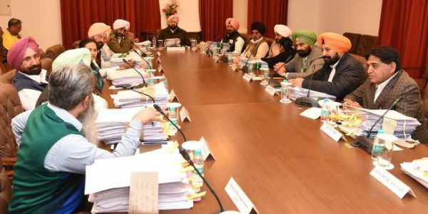 Cabinet committee constituted to deal with stray cattle menace