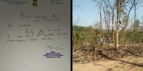Phulbari MLA in the soup over allowing auction of trees