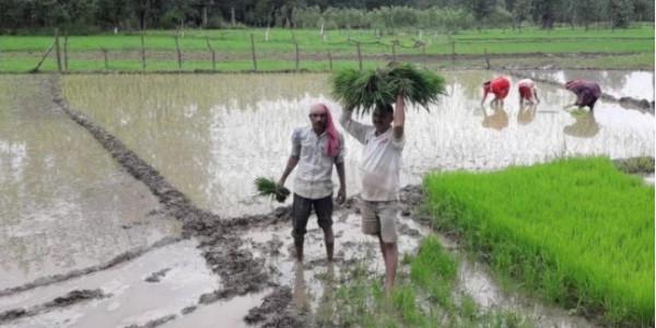 4 लाख करोड़ के कर्ज माफ करने की तैयारी में सरकार, बजट में भी खुलेगा किसानों के लिए खजाना