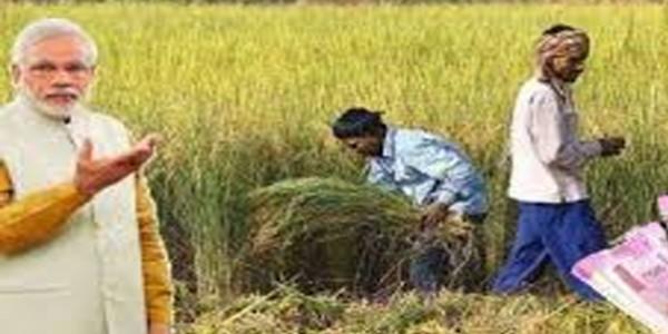 पीएम किसान निधि योजना - प्रदेश के 55 लाख किसानों में से 17 लाख किसानों के आवेदन बाकी