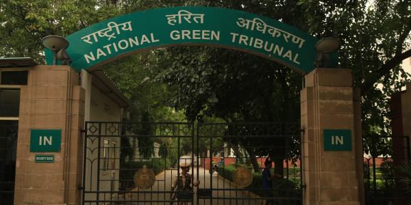 दिल्ली सरकार प्रदूषण रोकने के लिए क्या कर रही है: एनजीटी