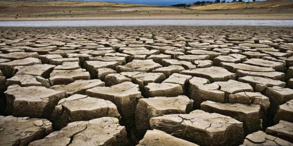 Drought-prone satellite report: BJP Minister blames PM Modi for eliminating talukas from the list