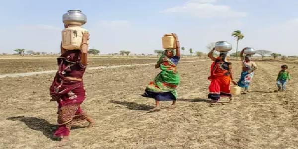 इन राज्यों में इसलिए मंडराया खेती पर संकट, सरकार ने तैयार किया प्लान!
