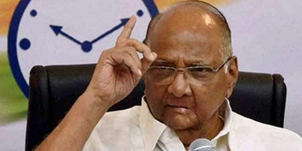 'We Don't Worry About Crows': Sharad Pawar Takes Swipe at NCP Leaders Who Switched Loyalties