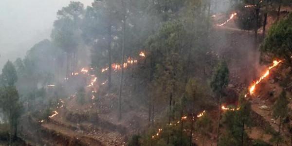 कैसे बुझेगी उत्तराखंड के जंगलों की आग... वनकर्मियों के पास ज़रूरी उपकरण, कपड़े ही नहीं
