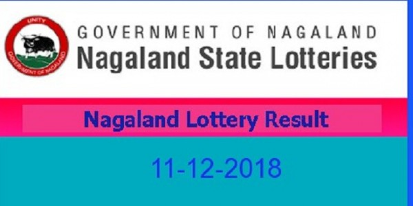 nagaland-state-lottery-results-for-today-feb-12-dear-parrot-evening-lottery-results-to-be-announced-at-8-pm-1st-prize-is-rs-26-dot-01-lakh