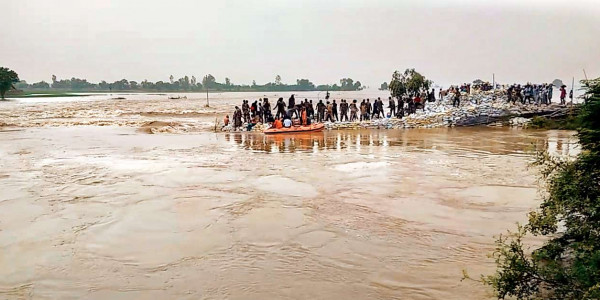 Punjab residents rely on NDRF as state administration's help delayed