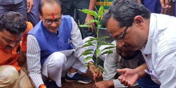 शिव राज में प्लांटेशन की कमलनाथ सरकार कराएगी जांच, 1 दिन में 7 करोड़ पौधे लगाने का दावा