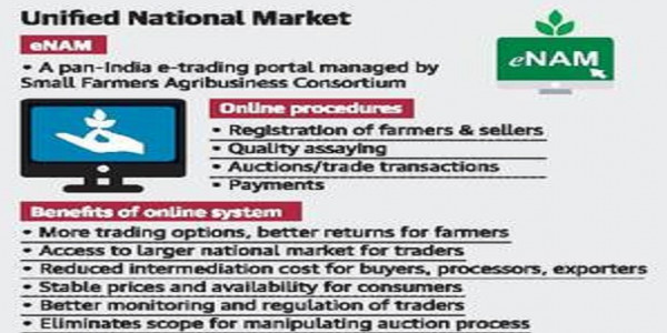 State to join e-farm market