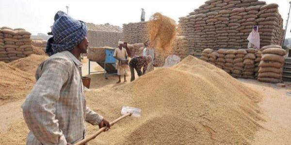 farmers-payments-issue-govt-u-turn