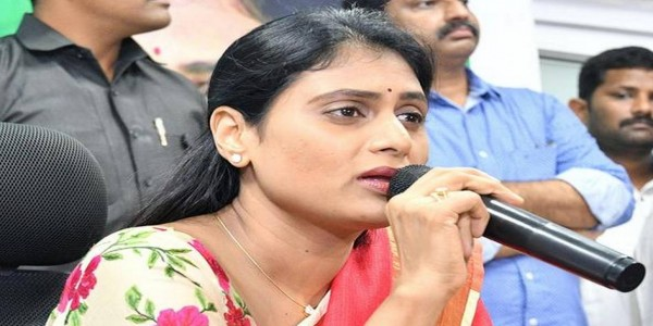Vote for TDP will push A.P. back by 25 years: Sharmila