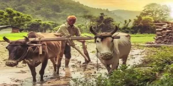 UP के एक भी किसान को नहीं मिली PM-KISAN योजना की तीसरी किश्त