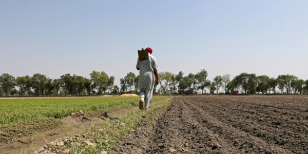 Farmers' meet resolves to formulate water and farmers' policy