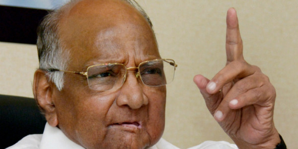 Take Up Flood Relief at 'War-Level', NCP Chief Sharad Pawar Tells Maharashtra Govt