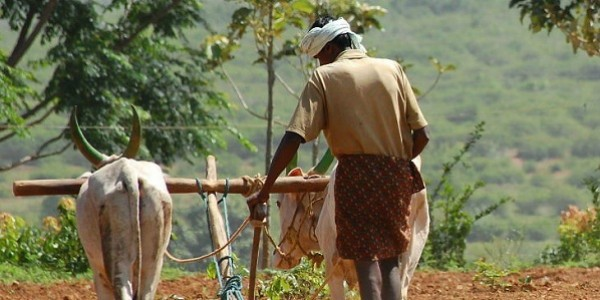 नई गाइडलाइंस जारी, सरकारी कर्मचारी, नेता और आयकर दाता किसान को नहीं मिलेगा फायदा