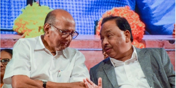 Don't know if Narayan Rane joining Congress was mistake or blunder: Sharad Pawar