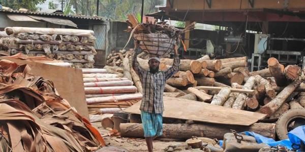 How floods broke the backbone of plywood factories, rice mills in Kerala