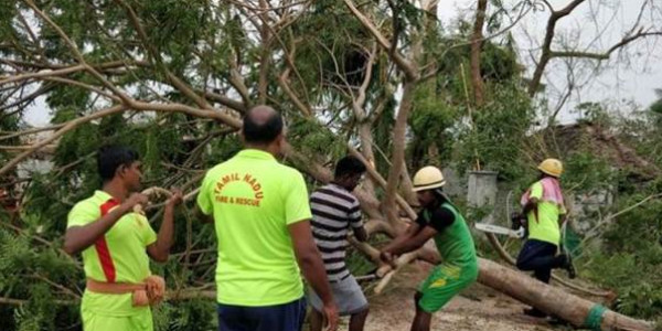 Cyclone Gaja: 7 districts in Tamil Nadu affected, 13 killed