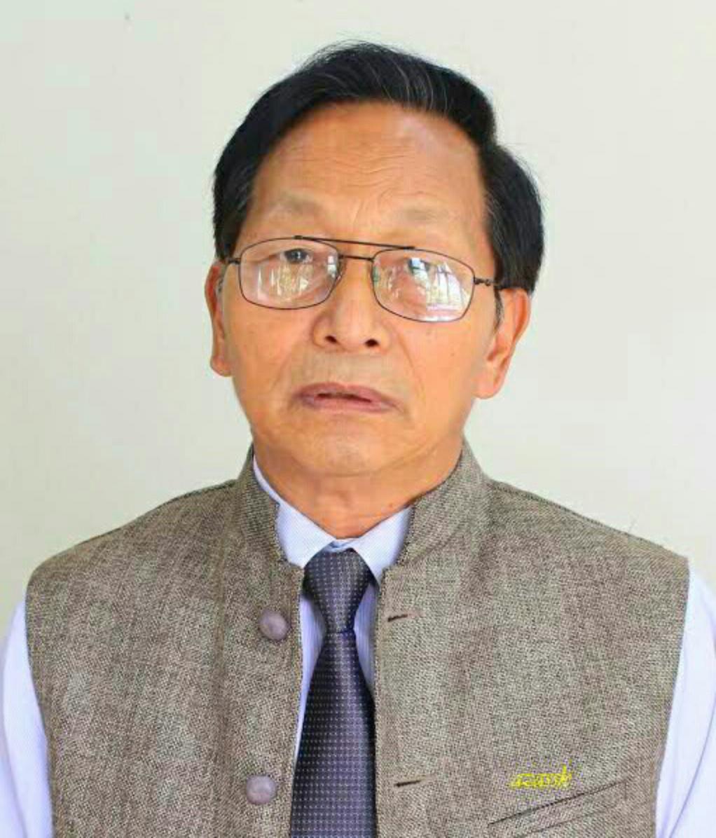 Here is Prof JV Hluna Profile