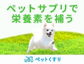 ペットサプリメント歯周病