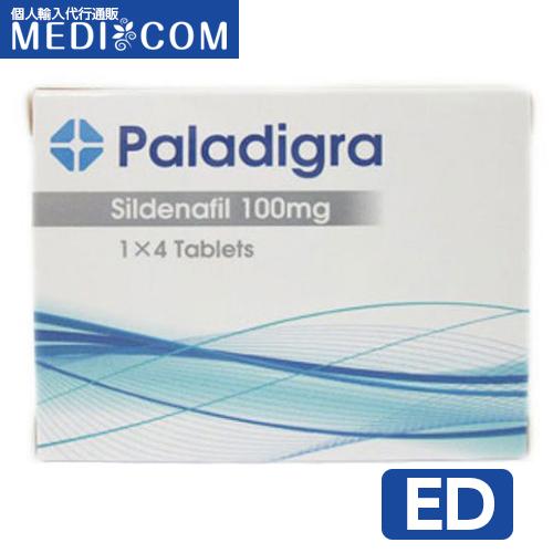 パラディグラ(300x300)