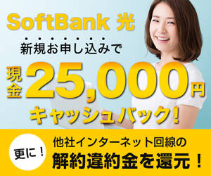 SoftBank光インターネット回線開通促進プロモーション 300×250