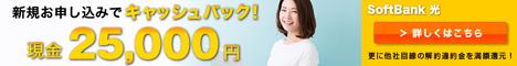SoftBank光インターネット回線開通促進プロモーション