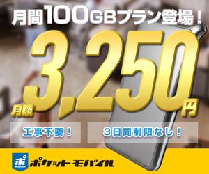 こちらから購入 ポケットモバイル【100G】