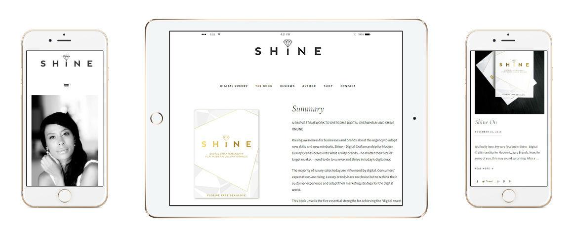 mOOnshot digital marketing agency Singapore - Shine Digital Luxury - iPad screenshot
