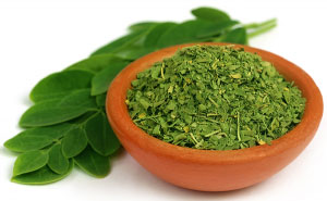 Facts_about_Moringa