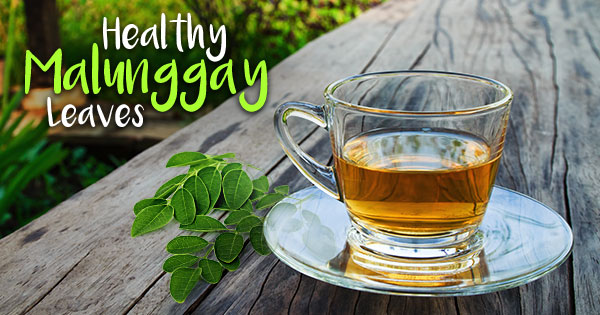 Health Benefits of Malunggay in a Cup
