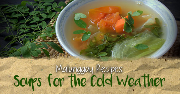 Malunggay Recipe: Soups for the Cold Weather