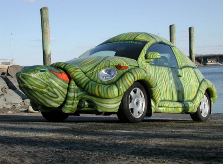 Volkswagen Beetle Turtle Car