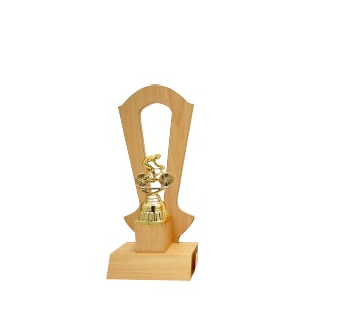 AT30773(10) Acrylic Pattern Trophy (A/B/C)