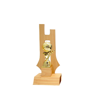 AT30774(1) Acrylic Pattern Trophy-Football (A/B/C)