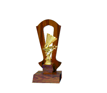 AT30776(2) Acrylic Pattern Trophy-Badminton (A/B/C)