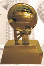 FT4149 Half Fiber Netball Trophy (A/B/C)
