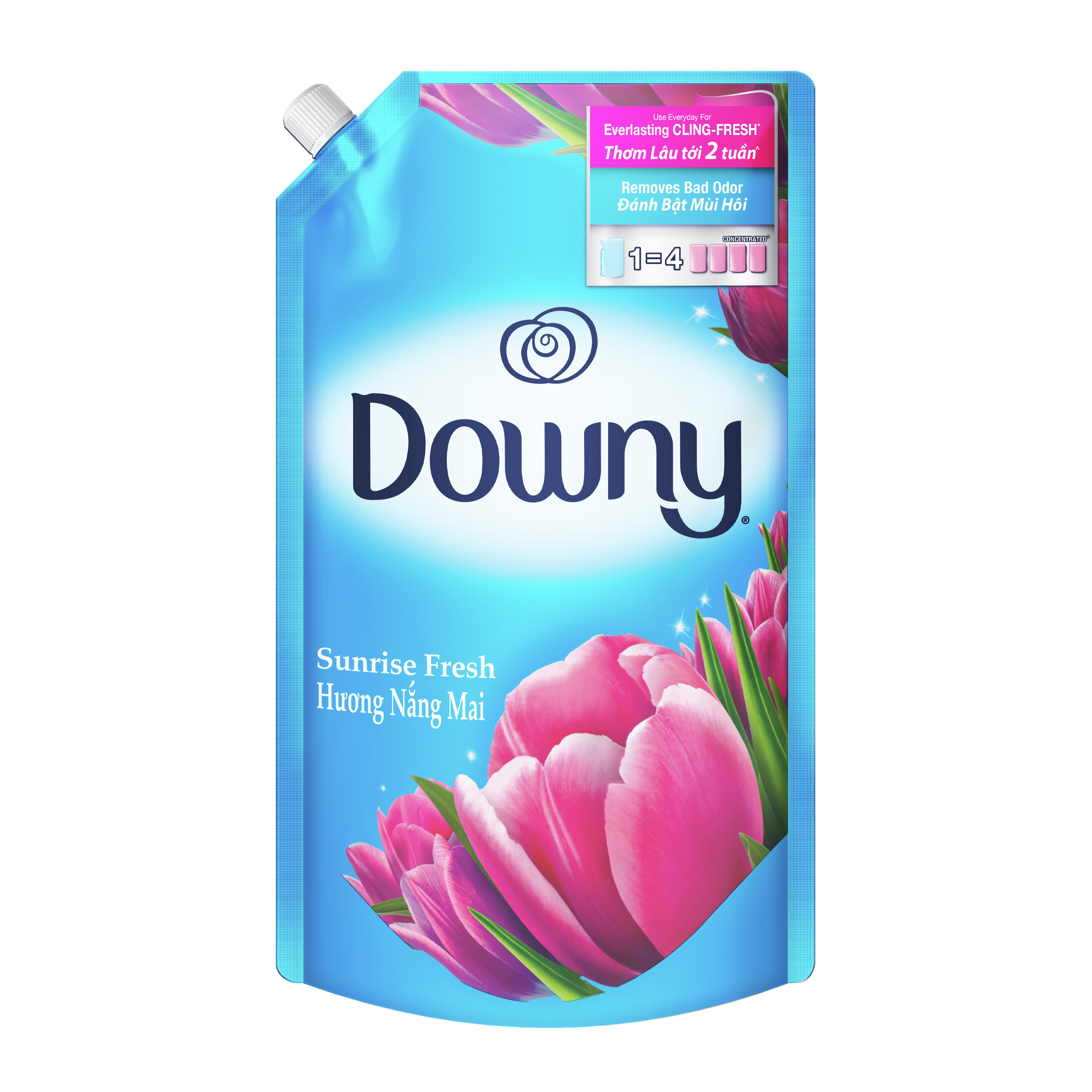 Downy Concentrate Fabric Conditioner (1.6L) – 2 Variants