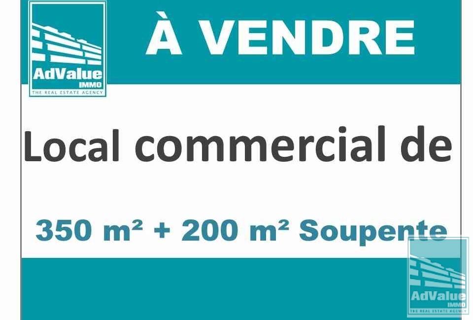 DV.255 : Beau L.C. de 350 m² + 200 m²