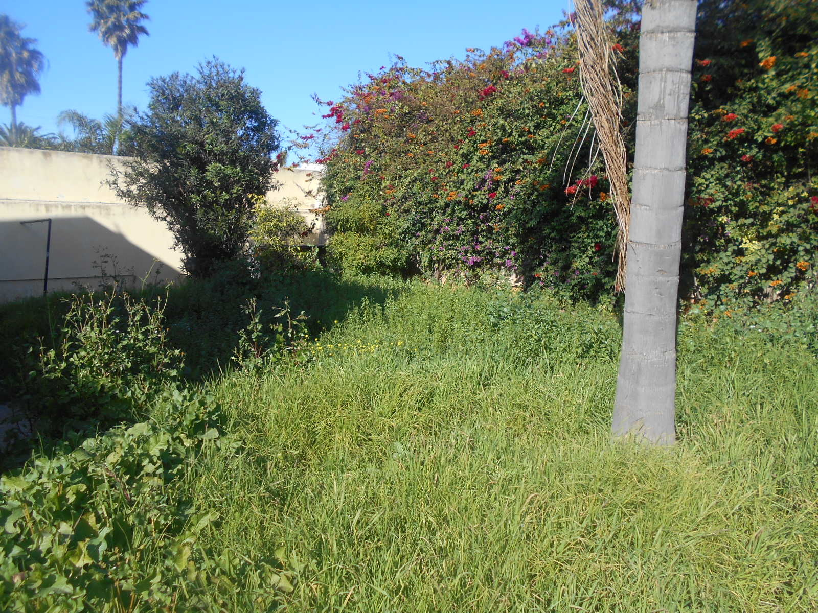 Villa à vendre Casablanca Chantilly