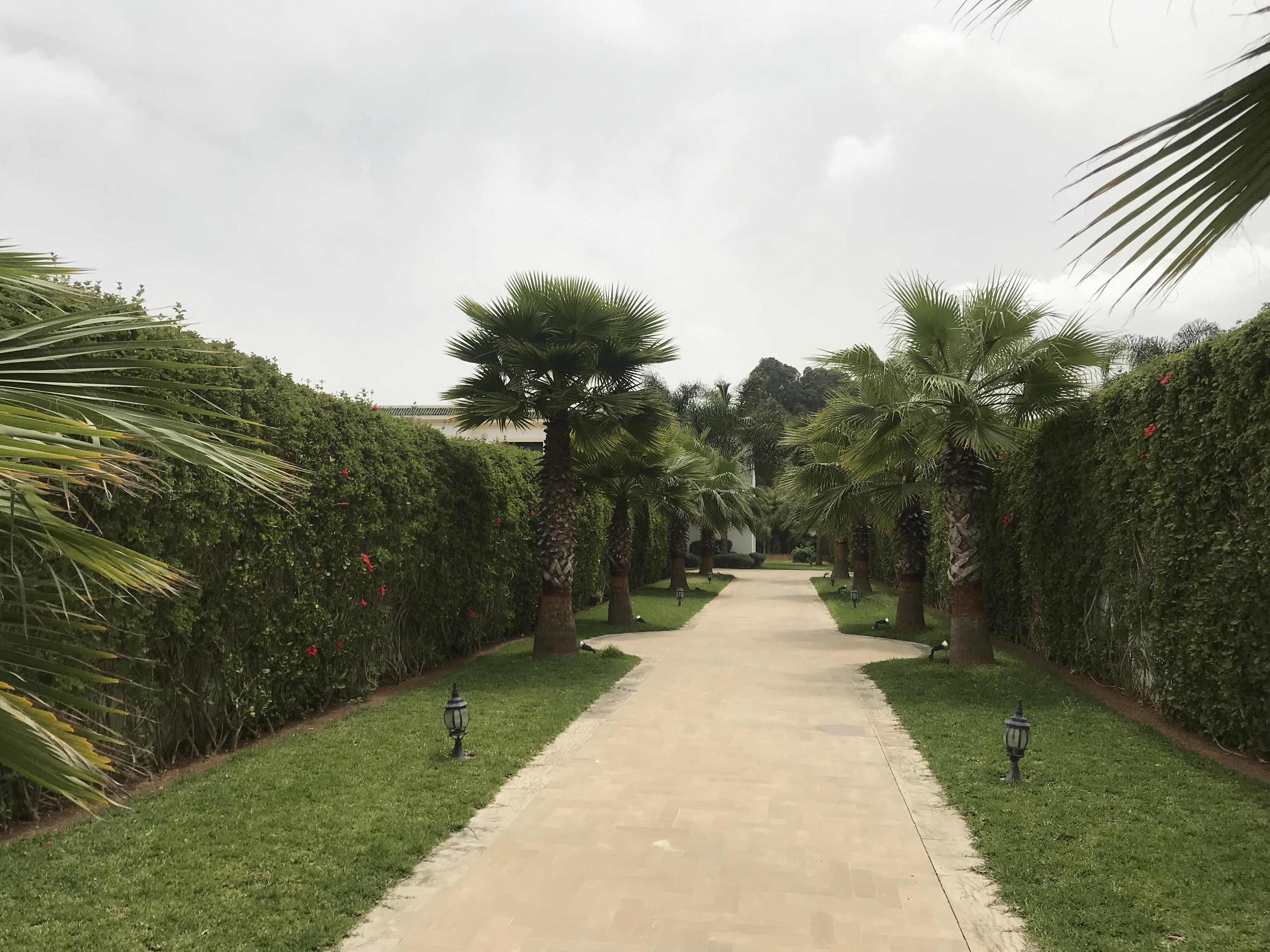 Vente <strong>Villa</strong> Rabat Bir Kacem <strong>2198 m2</strong>