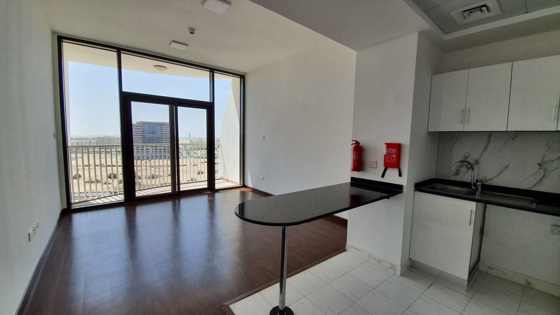 Combination of Studios and One Bedrooms for Rent