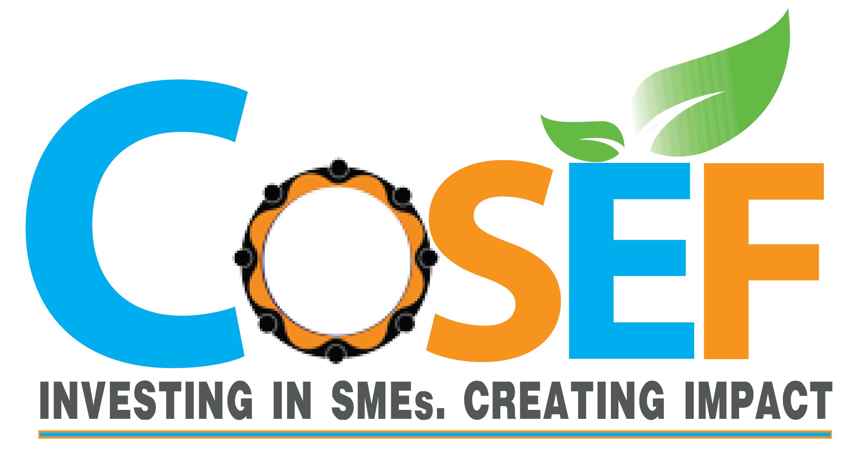 COSEF, LLC