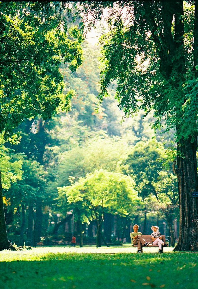 Công viên Hoàng Văn Thụ một sớm xanh trong - Ảnh: Hoàng Thanh