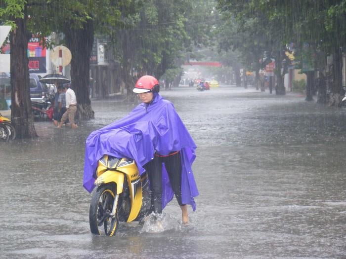 Dù và áo mưa sẽ là vật bất ly thân nếu bạn du lịch vào mùa mưa