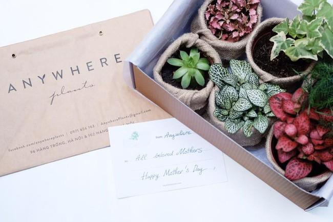 Đi đâu ở Hà Nội để tìm những món đồ nhỏ nhỏ, xinh xinh bày biện trong nhà? - Ảnh 5.
